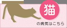 猫の病気はこちら